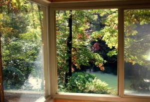 window view resized